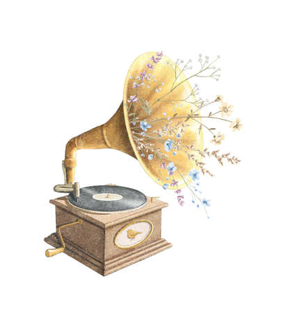 Watercolor vintage old gramophone with record and dried flowers isolated on white background. Hand drawn illustration sketch Archivio Fotografico