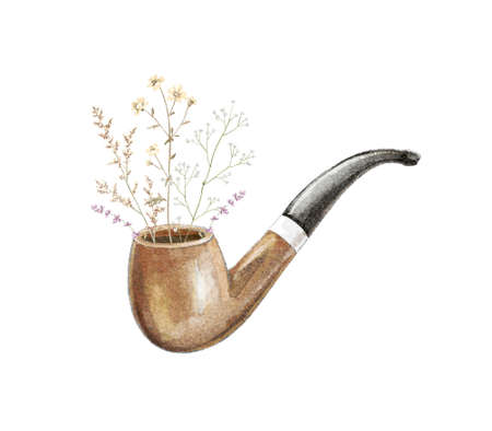 Watercolor vintage wooden brown smoking pipe for tobacco and bouquet with meadow dried flowers isolated on white background. Hand drawn illustration sketch