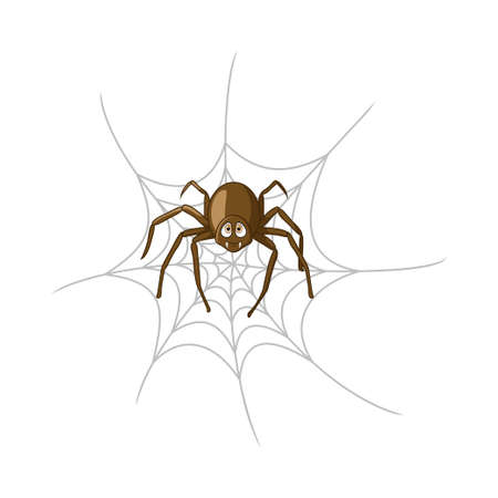 Cartoon spider in cobweb isolated on white background