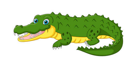 Cute crocodile cartoon isolated on white background