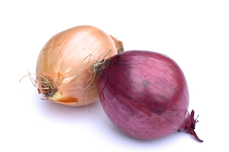 pinching: Onion on white background. Stock Photo