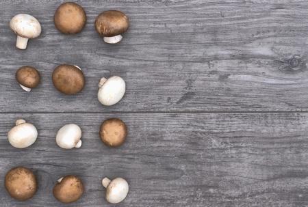 Mushrooms on a gray wooden background