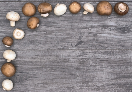 Frame with mushrooms on wooden background and copy space. Imagens