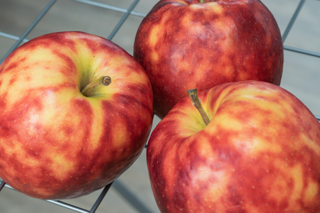 Ripe, colorful mottled apples on a background of grids.