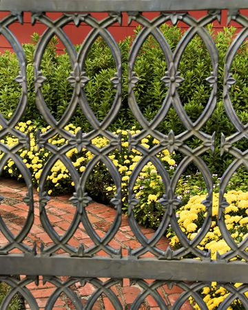 Peeping through the garden gate to a brick path and yellow mums. photo