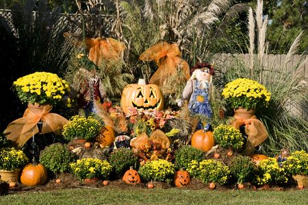 A display of garden and fall items.
