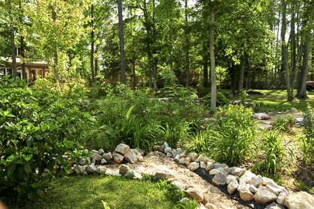 compacted: A lush green garden with compacted greenery and a dry creek bed
