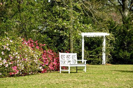 A garden bench surrounded by spring azaleas