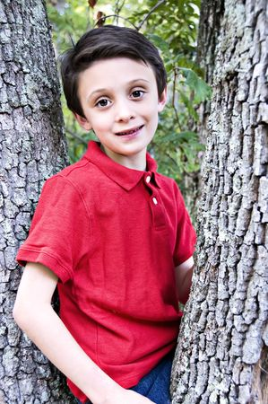 Boy in tree wearing a red shirt.