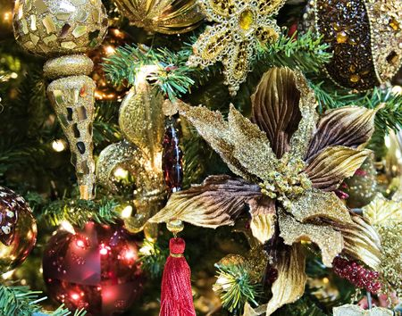 Close-up of a poinsettia shining with glitz