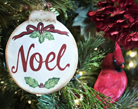An ornament with Noel and a red bird. photo