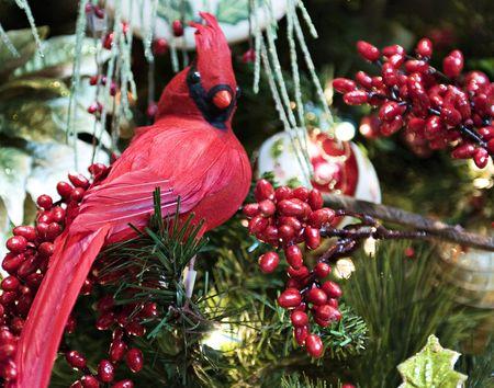 Rode vogel decoratie van Kerst mis met rode bessen Stockfoto