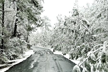 路面凍結氷と雪の風景に囲まれました。