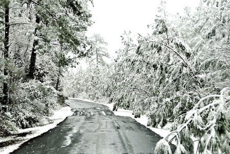 Icy road surrounded by ice and snow landscapes Stock Photo