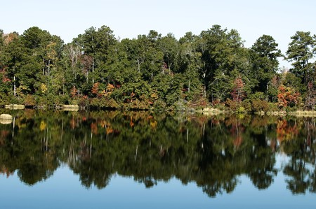 Reflections of  fall foliage in the water.