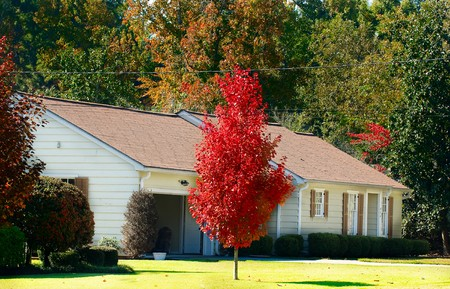 A beautiful fall landscape and front of a home.