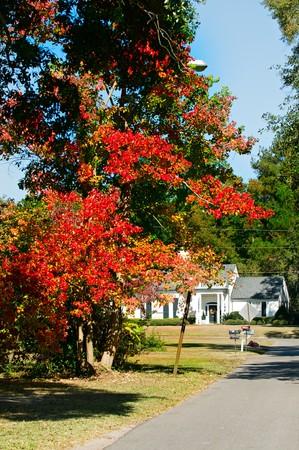 バック グラウンドでの伝統的な家庭で青い空と秋の葉。 写真素材