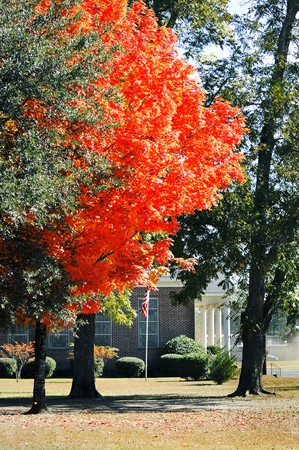 A church in the fall of the year graced with an orange beauty Stock Photo
