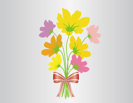 Vector cosmos flower  bouquet ribbon binding and greeting card. 矢量图像