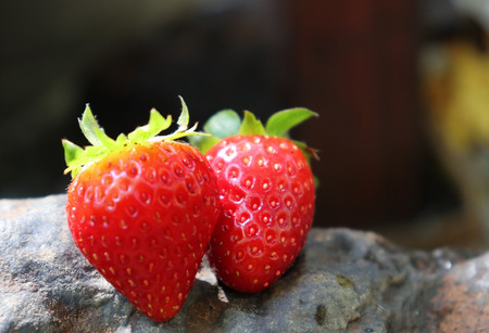 close-up of fresh strawberries.