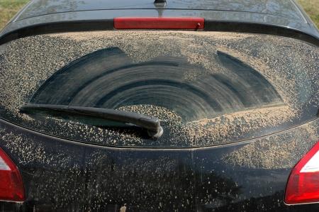 ruitenwisser: Vuile achterruit van een auto met wisser Stockfoto