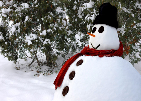 black cap: Snowman with a red shawl, chocolate buttons and black cap Stock Photo