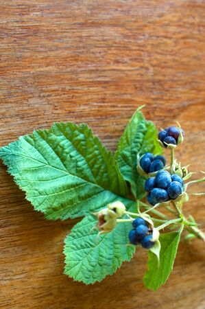 Wild blackberry on a wooden table-selective focus Imagens