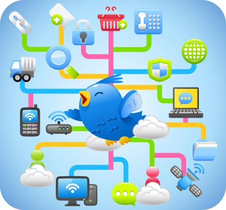 cloud security: Blue bird,cloud computing,network concept