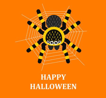gossamer: Vector illustration  Halloween spider