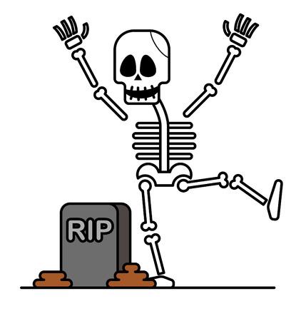 sceleton: Halloween skeleton character.