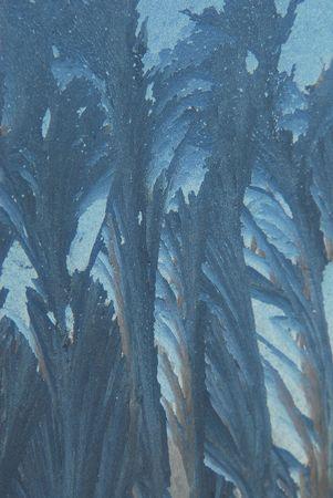 iceflower: Fiori di ghiaccio sulla finestra  Archivio Fotografico
