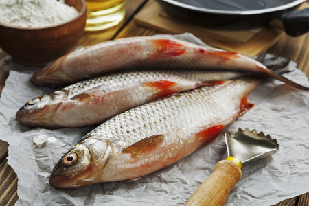 ide: Fresh fish rudd, ide on a wooden table