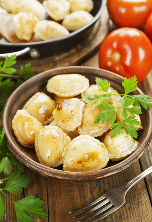 frying pan: Delicious dumplings in the frying pan Stock Photo