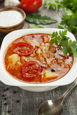 Soup with fresh cabbage and meat in the plate Stock Photo