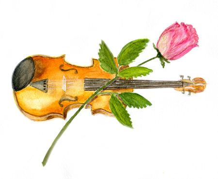 stradivarius: The violin and rose isolated on white background, illustration, paper texture
