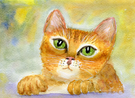 meaningful: Portrait of a pensive furry cat, fairy-tale childrens illustration, watercolor  and paper texture