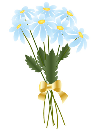 camomiles macro: Greeting card, bouquet of blue daisies with golden bow isolated on a white background