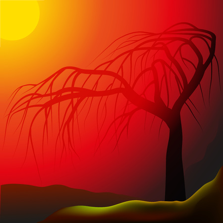 hilly: Lonely tree against sunrays, hilly landscape, illustration