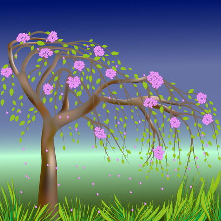 sky grass: Blooming spring tree on the background of sky, grass and meadows, illustration