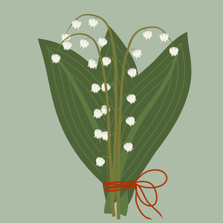 white lilly: Bouquet of spring lilies of the valley with leaves on a blue-green background, illustration