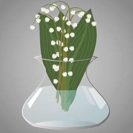 Bouquet of lily of the valley leaves in a transparent vase, illustration Illustration