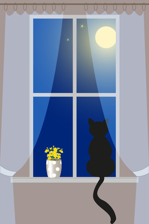 Cat on the windowsill looking at the night sky, illustration