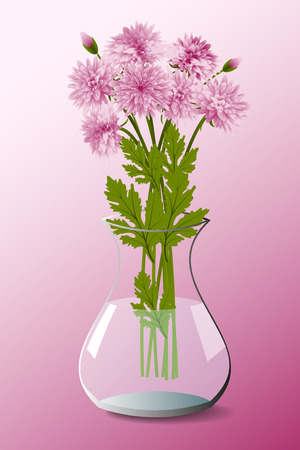 Bouquet of pink chrysanthemum in a transparent vase on a pink background
