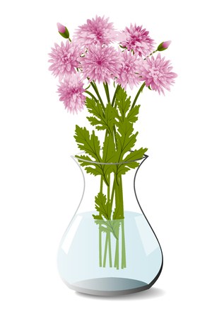 Bouquet of pink chrysanthemum in a transparent vase isolated on white background