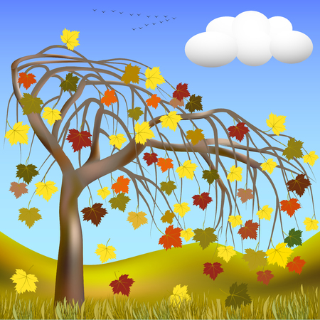 Autumn tree with colorful leaves on a background of hills and grass, cloud, and a flock of migratory birds on the horizon. illustration