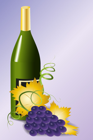Bottle of wine and blue grapes with golden leaves on a purple background, vector illustration