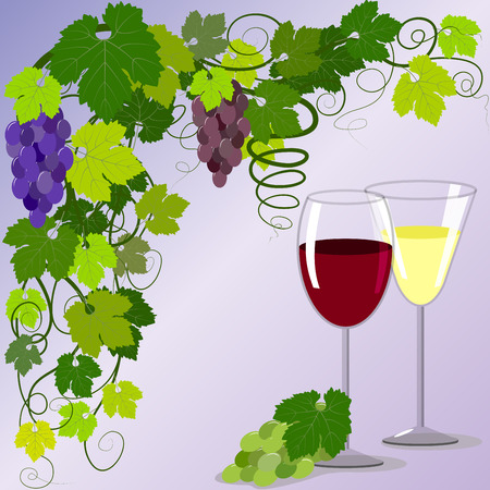 Two glasses, branches and bunches of grapes, vector illustration