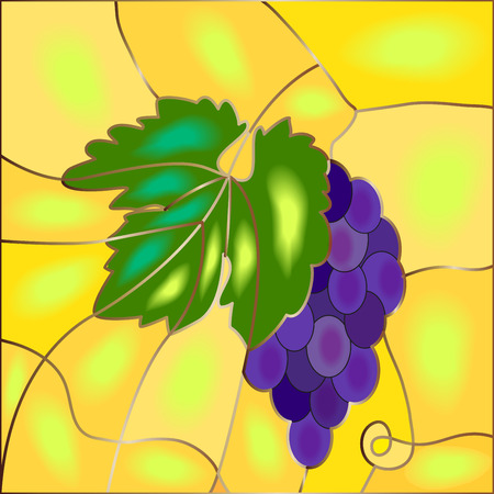 Stained-glass bunch of blue grapes with leaves, vector illustration Illustration