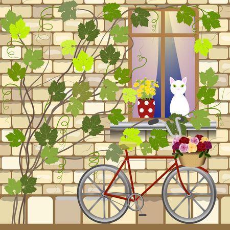 windowsill: The wall of the old house with winding vines, a bicycle with a basket of roses under the window, cat on a windowsill, vector illustration Illustration