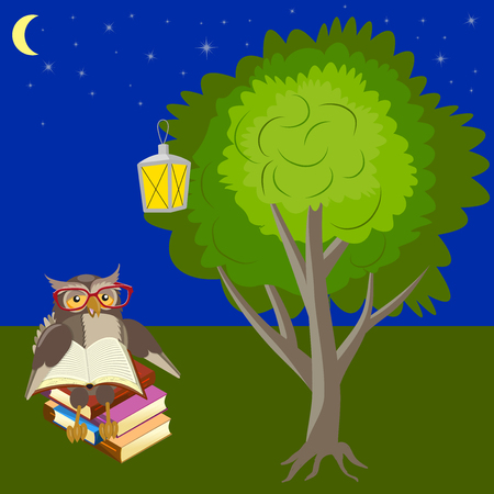 Owl is reading